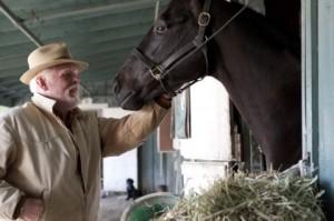 nolte-horse-luck-cancelled-300x199