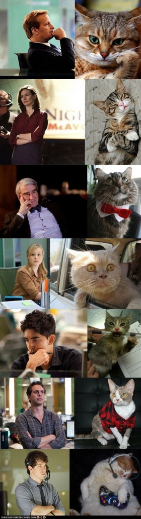 funny-pictures-the-cast-of-the-newsroom-as-portrayed-by-cats-280x1024