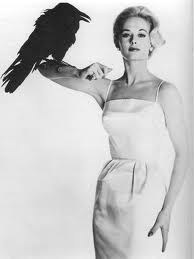 tippi-and-bird