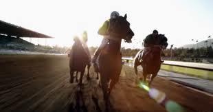 LUCK_Horses