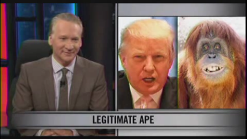 Real-Time-Donald-Maher-Orangutan