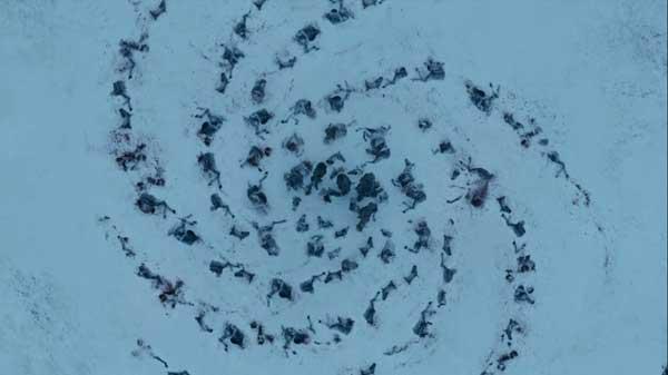 White-Walker-Circle