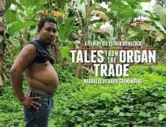 docs_talesorganteade