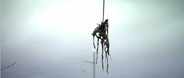 trailer-effigy