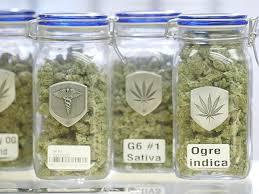 VICE_marijuana