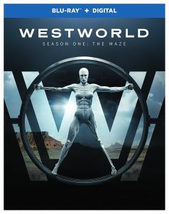 Westworld-blu-ray-dvd-238x300